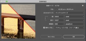画面解像度の変更ウィンドウ(解像度が300pxでWeb表示には向かない状態)